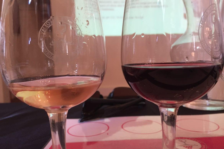 A Cape Wine Master-class
