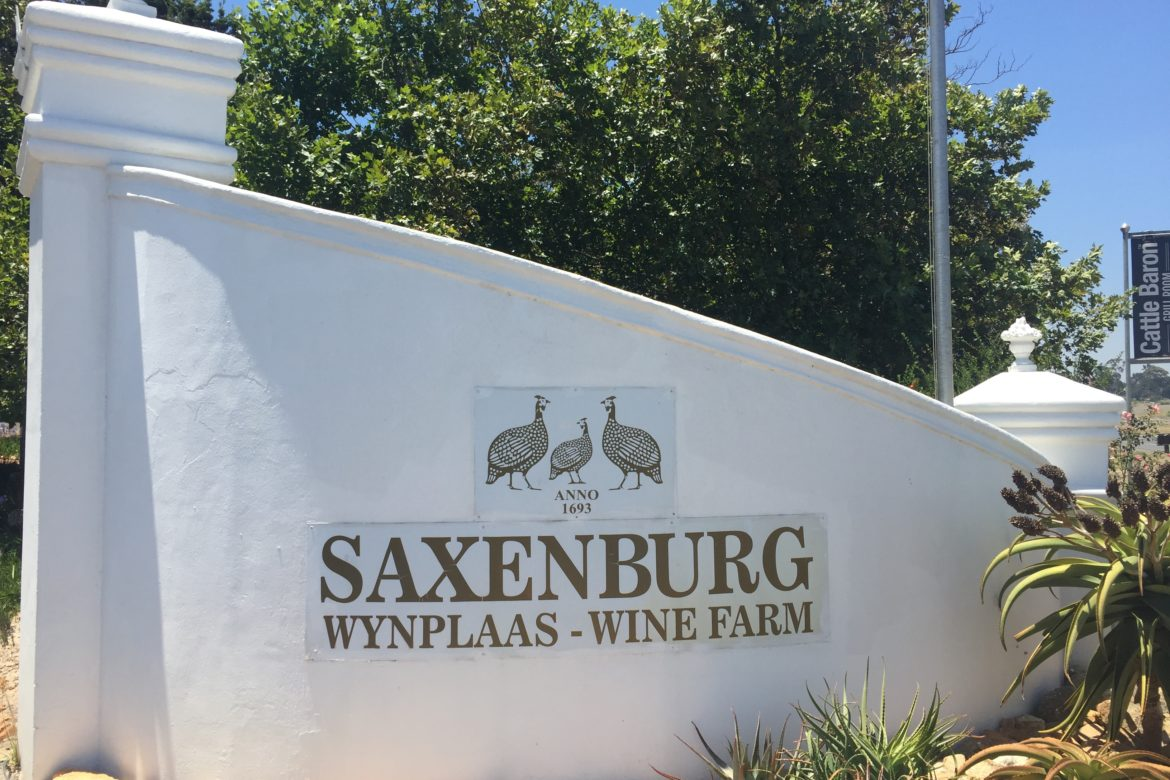 Saxenburg Puts Heart, Mind and Soul into Its Wines