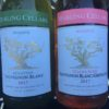 The Darling from Darling Steps into the Vineyard