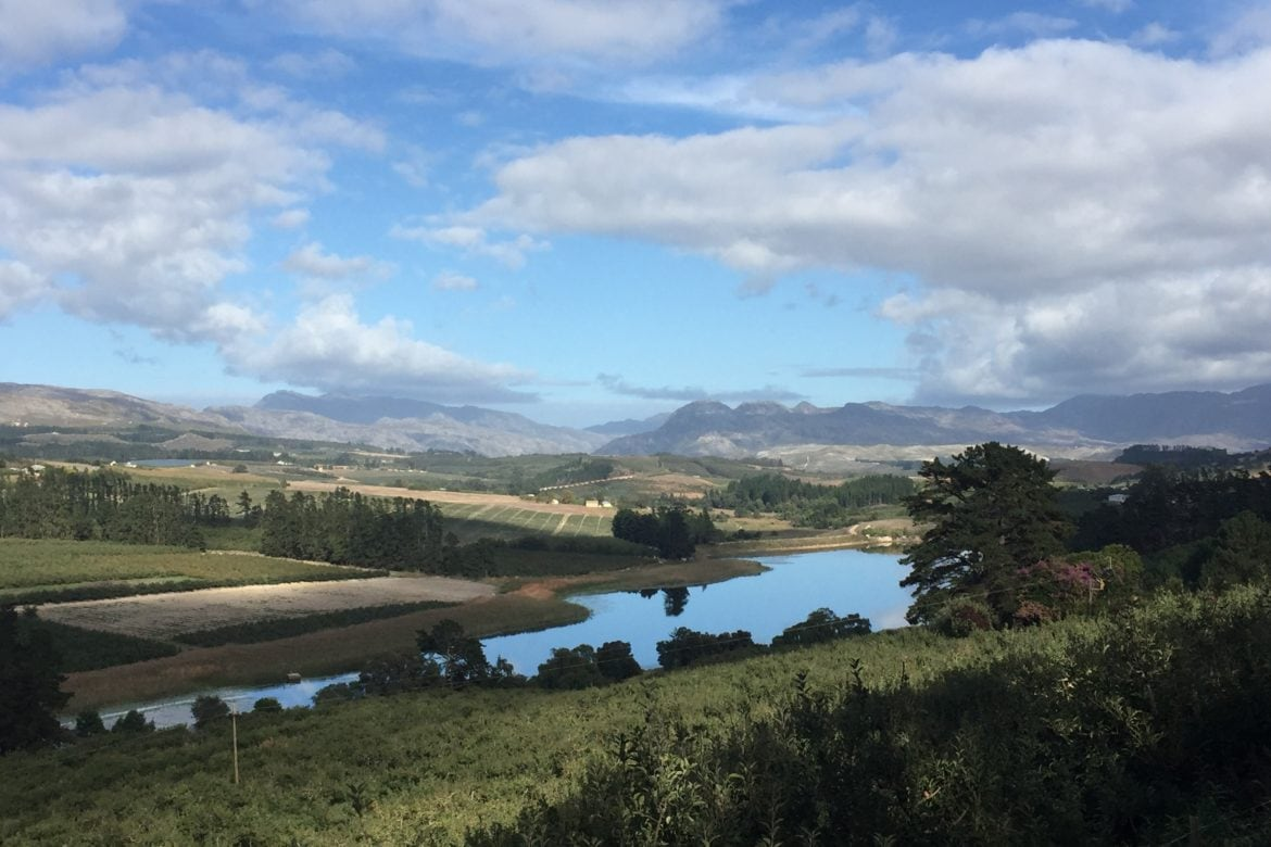Elgin Valley is the Cool Wine Tour