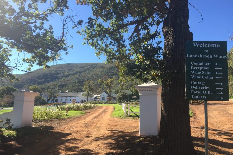 Honest, Affordable Family Wines at Landskroon