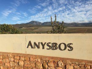 Anysbos