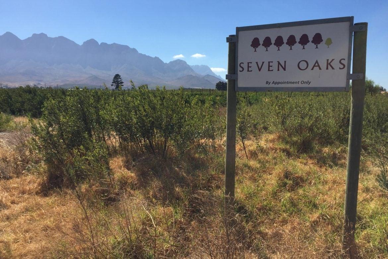 Seven Reasons To Visit Seven Oaks Wines