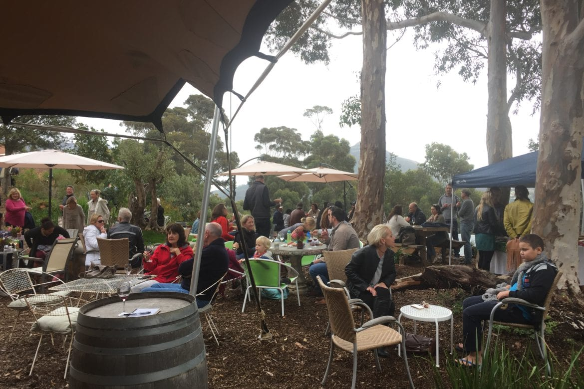 Hout Bay Vineyards – Simply the Best!