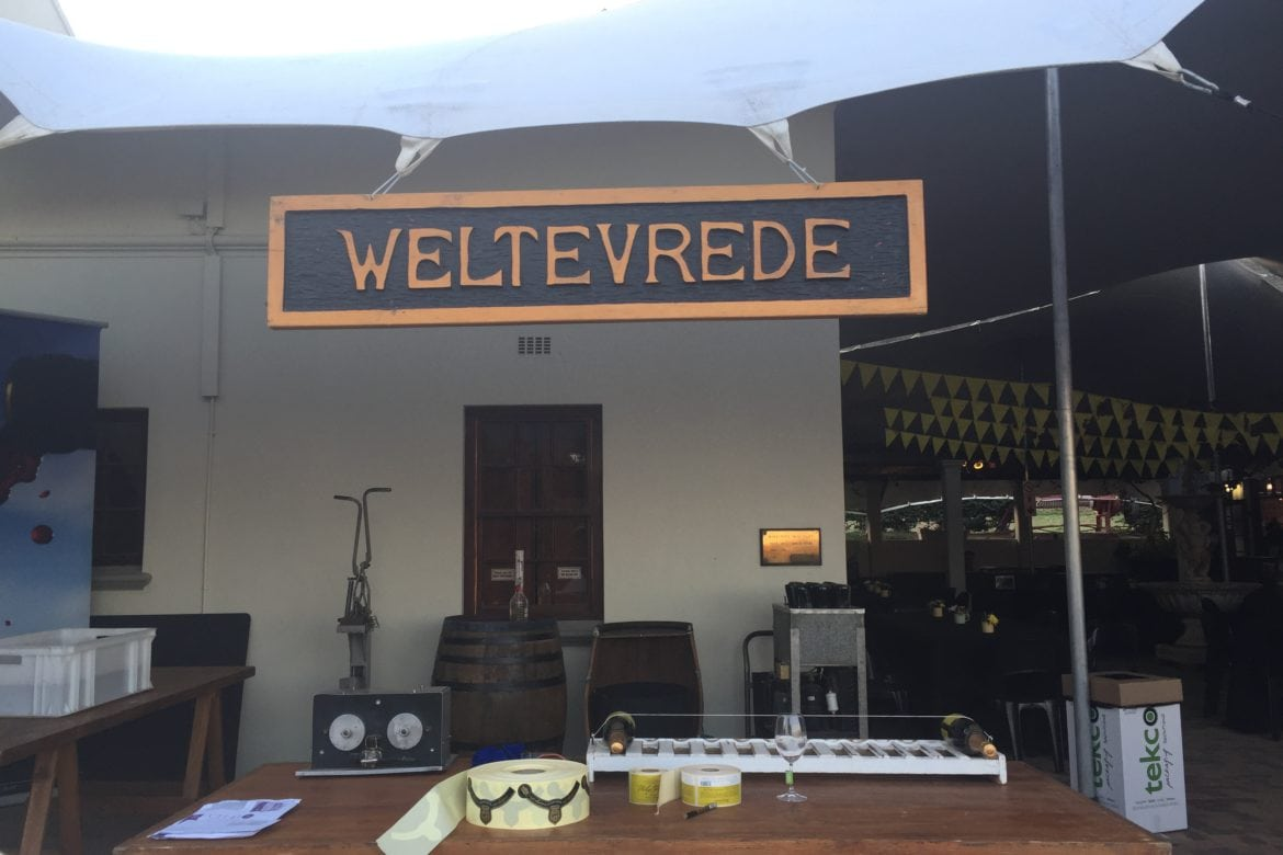 Dis-gorgeous at Weltevrede