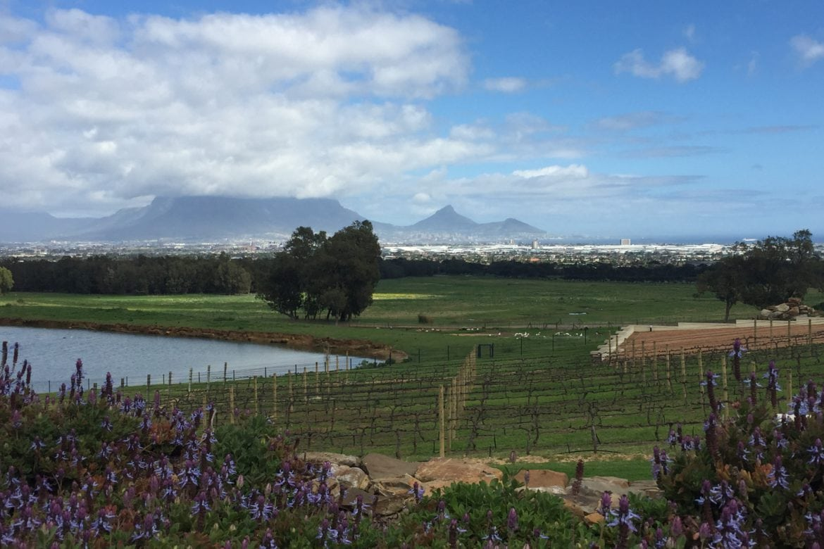 Latching onto Superb Wines at De Grendel