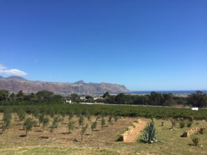Capelands